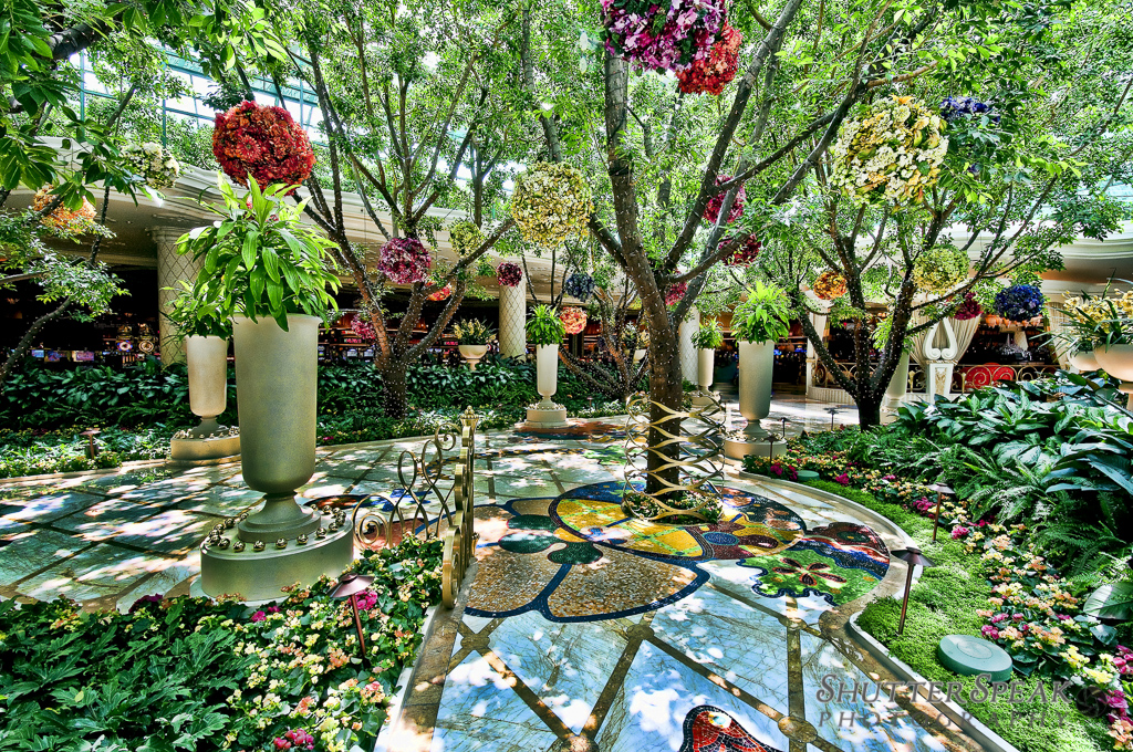 flowers of the wynn